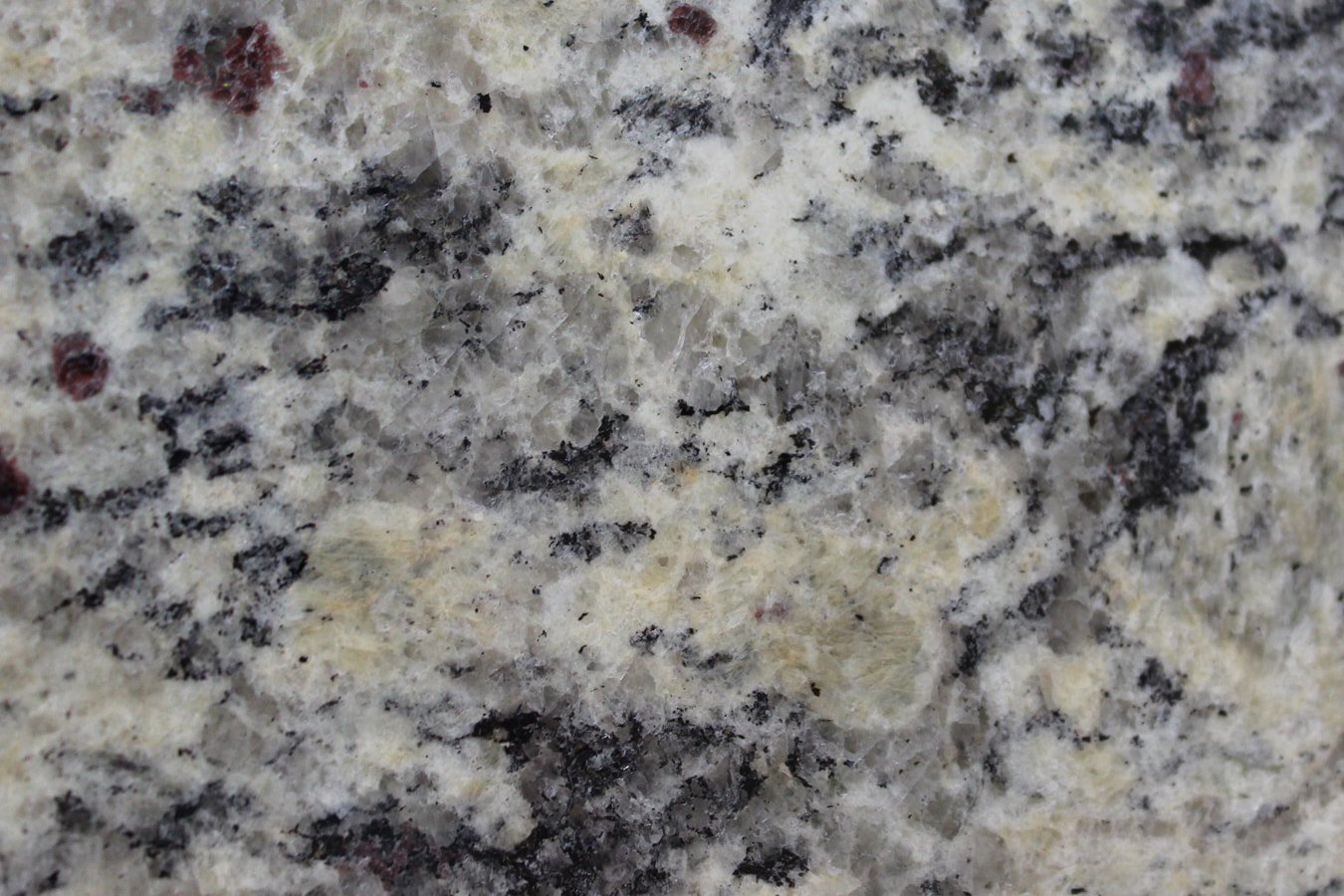 Santa Cecilia (Light) (Granite) - Pius Kitchen & Bath